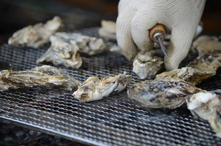 Oyster to be grilled
