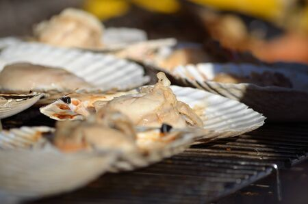 fishery products: Grilled Scallops with sea shells