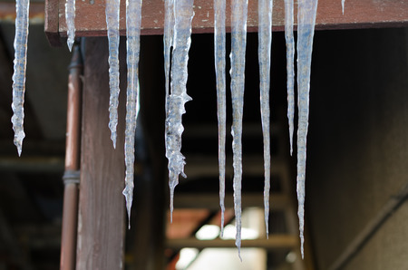 icicles: Winter icicles