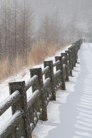 Winter Rails 版權商用圖片 - 82672579