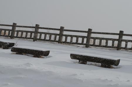 Winter Rails 版權商用圖片