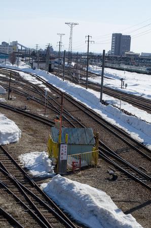 Snow train Editöryel