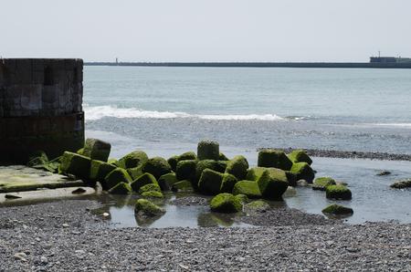 Hiroo sea