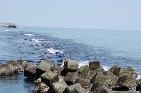 The sea in Hiroo town
