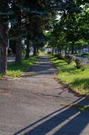 The roadside landscape