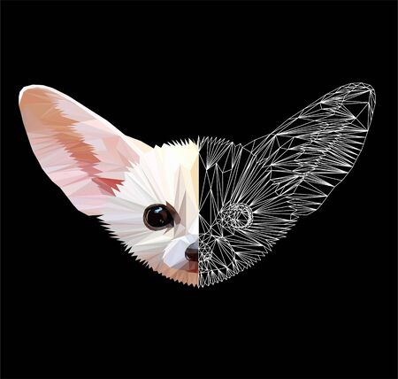Low poly triangular desert fox (fennec) face on black background, symmetrical vector illustration   isolated. Polygonal style trendy modern logo design. Suitable for printing on a t-shirt.