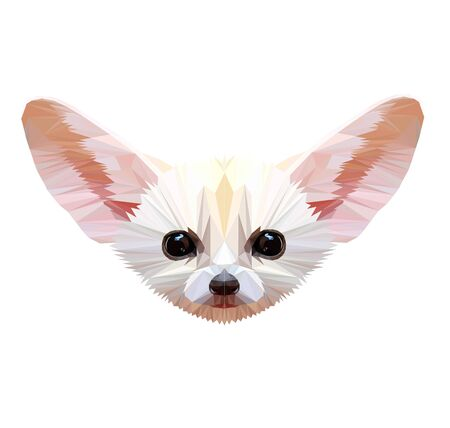 Low poly triangular desert fox (fennec) face on white background, symmetrical vector illustration   isolated. Polygonal style trendy modern logo design. Suitable for printing on a t-shirt.