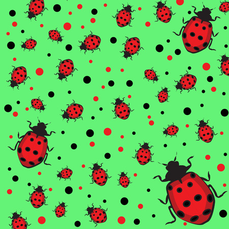 ladybug ilustration Illustration