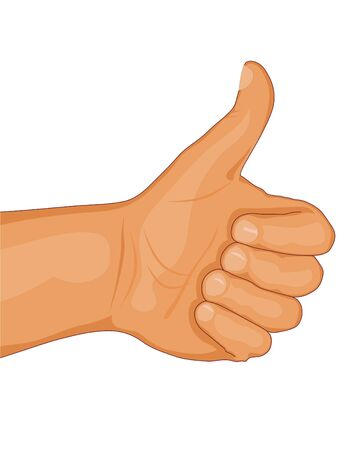 Vector illustration of thumb up