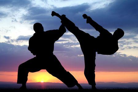 arts: Martial arts                                Stock Photo