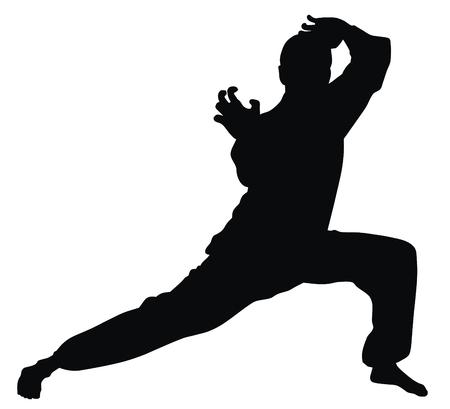 kyokushin: Martial arts