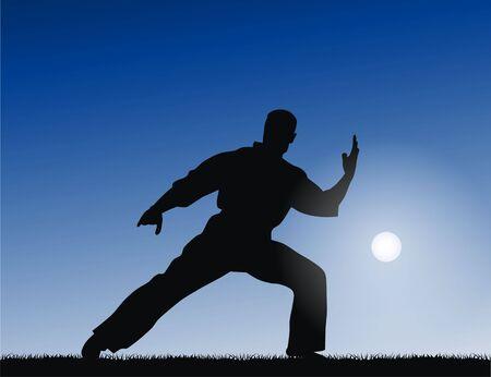 kyokushinkai: Martial arts Stock Photo