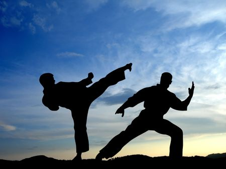 Martial arts Stock Photo - 3455862