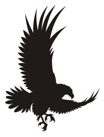 adler silhouette: Vektor-Illustration der fliegenden Adler