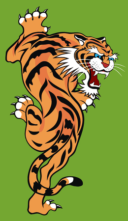 carnivora: Abstract vector illustration of tiger