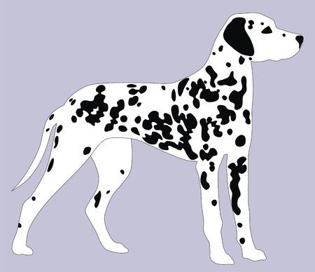 dalmatier: Abstract vector illustratie Dalmatische honden  Stock Illustratie