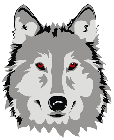 animals feeding: Abstract vector illustration of wolf face