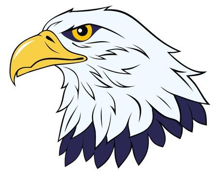 aguila volando: Color ilustraci�n vectorial �guila de cabeza