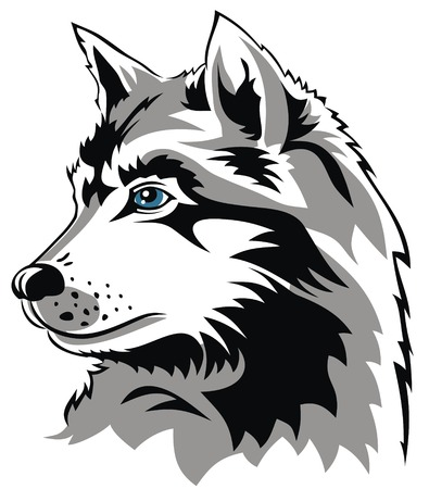 animals feeding: Abstract vector illustration of wolf