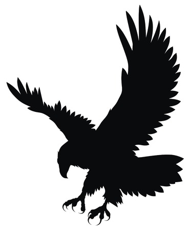 eagle: Abstract vector illustration of eagle