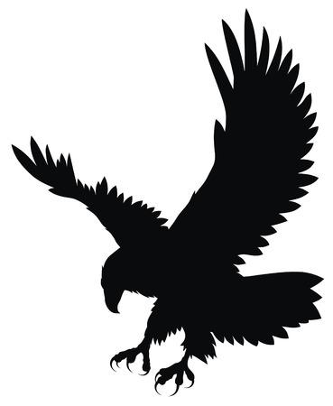 halcones: Resumen ilustraci�n vectorial de �guila