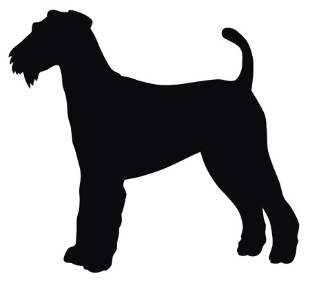terriers: Abstract vector illustration of hunting dog silhouette