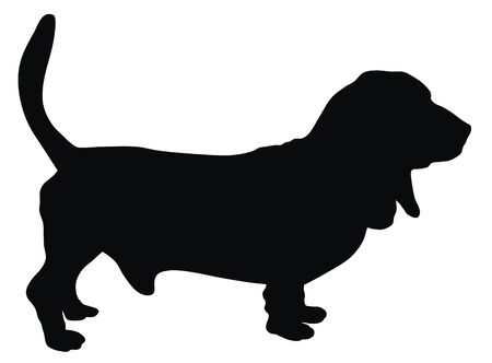 carnivorous animals: Abstract vector illustration of hunting dog silhouette