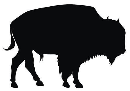 an ungulate: Illustrazione vettoriale Abstract di bufala