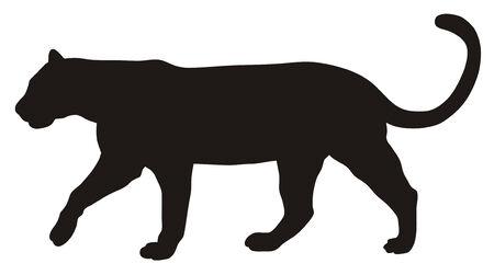 puma: Abstract illustrazione vettoriale di puma