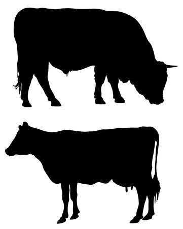 Abstract vector illustration of farm animals Stock Vector - 6251361