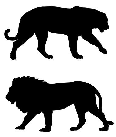 of lions: Ilustraci�n vectorial abstracta de siluetas de animales predadores