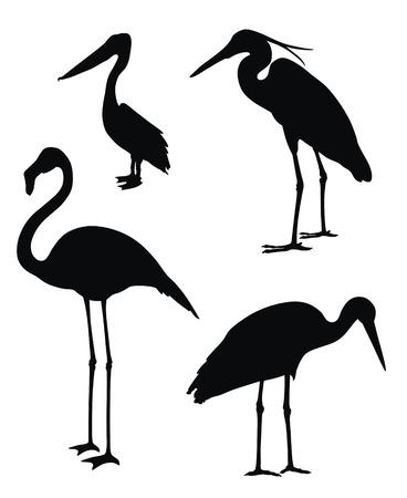 waders: Ilustraci�n vectorial abstracta de aves zancudas