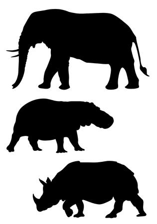 siluetas de elefantes: Ilustraci�n vectorial abstracta de animales salvajes Vectores