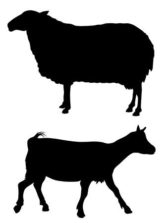 cabras: Ilustraci�n vectorial abstracta de animales de granja