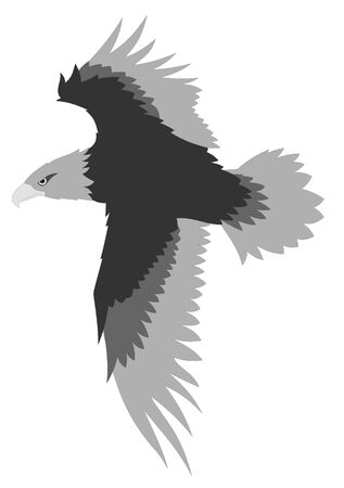 raptor: Abstract   illustration of eagle