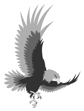eagle flying: Abstract illustration of eagle