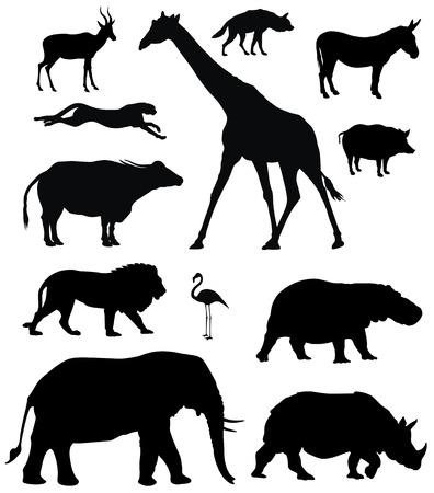 verschillende Afrikaanse dieren