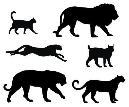 silueta tigre: siluetas de varios gatos
