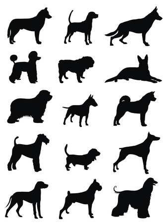 hounds: various dog race silhouettes Illustration