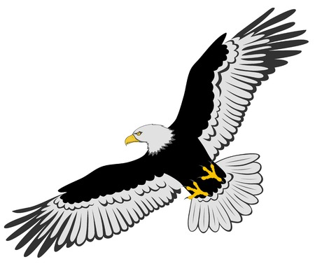 eagle flying: Abstract eagle Illustration