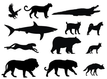 diverse dierlijke silhouetten van roof dier
