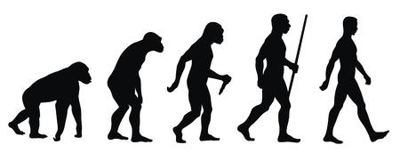 silueta humana: Ilustración vectorial abstracta de una línea de evolución