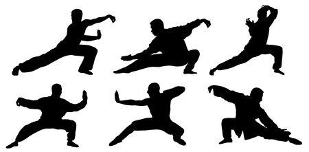 tai chi: Abstract vector illustration of martial art warrior silhouette