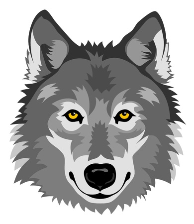 Abstract vector illustration of wolf head in front Vector