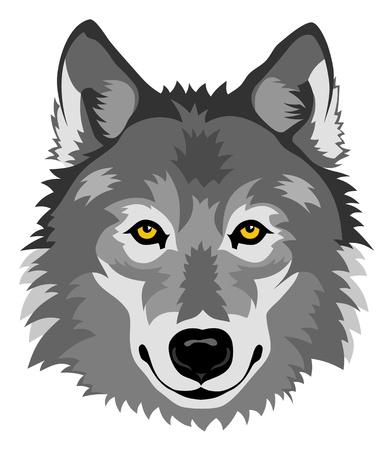 lobo: Resumen ilustraci�n vectorial de la cabeza del lobo en la parte delantera Vectores