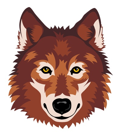 Abstract vector illustration of wolf head in front