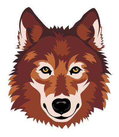 lobo: Resumen ilustración vectorial de la cabeza de lobo frente Vectores