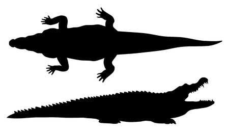 Abstract illustration of crocodile silhouette Vector