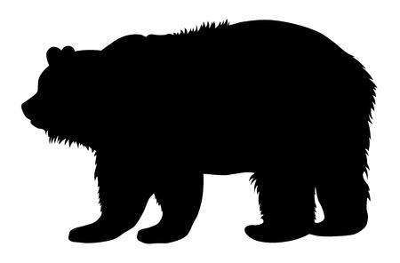 bear silhouette: Illustrazione vettoriale di orso bruno silhouette