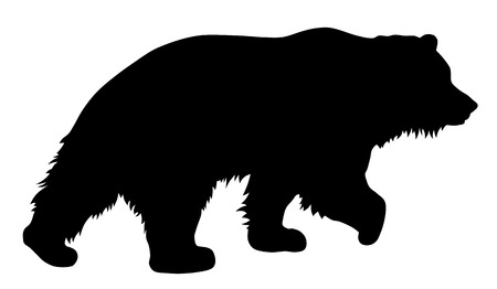 bear silhouette: Vector illustration of brown bear silhouette